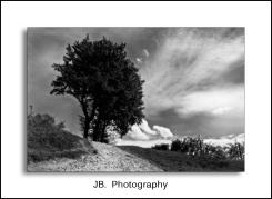Landschap Borgloon