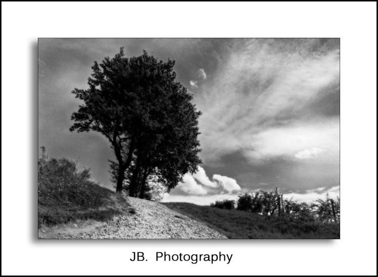 landschap-borgloon